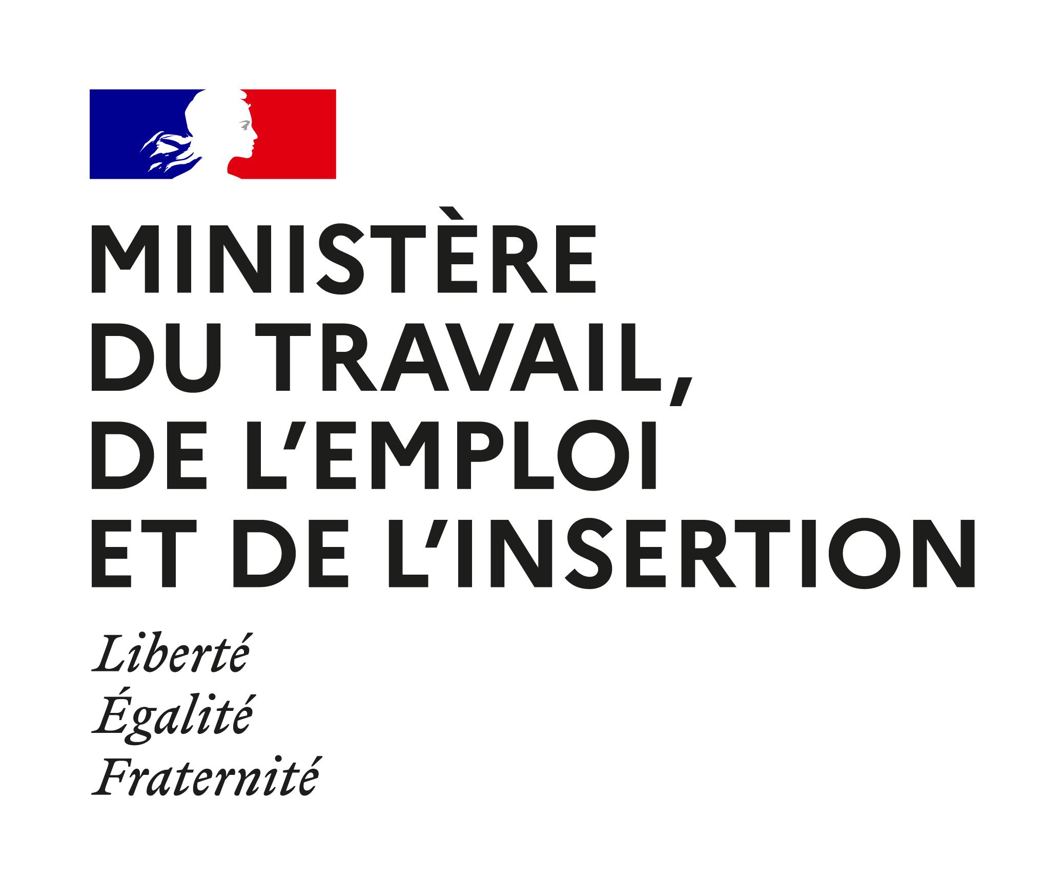 logo ministère du travail, de l'emploi et de l'insertion,
